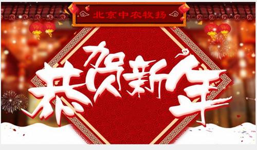 中农牧扬恭贺新年