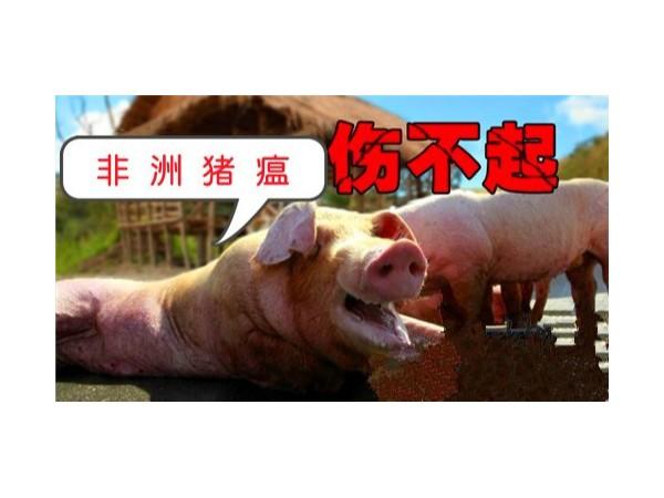 农业农村部进一步规范生猪屠宰环节—非洲猪瘟检测