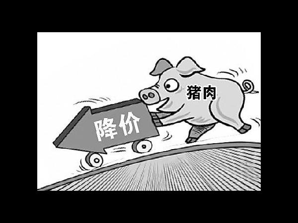 大场帮小户,生猪存栏首次回升,猪价降20%,投放4万吨储备肉保供应!