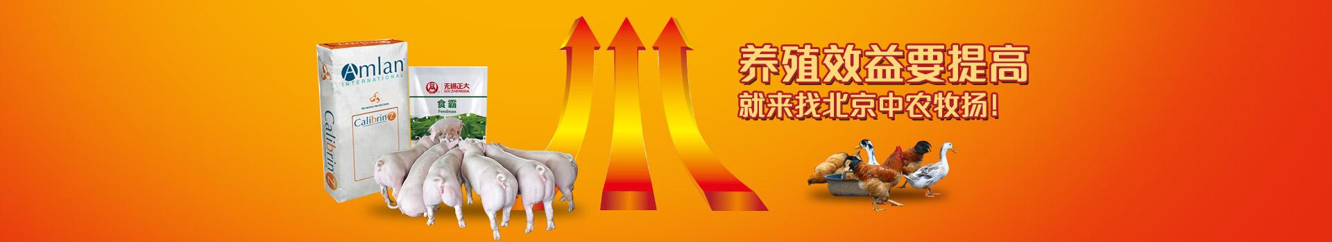 养殖效益要提高,就来找北京中农牧扬