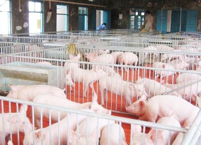猪场解决方案