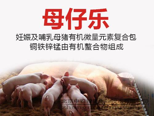 母仔乐 妊娠期哺乳母猪有机微量元素复合包