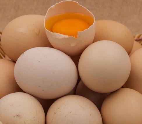蛋鸡产蛋率提高的秘密武器—帝斯曼壮骨素!