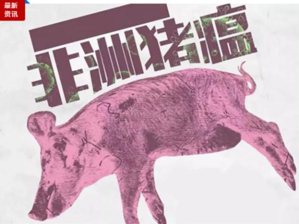 """农科""""国家队""""今年启动非洲猪瘟防控等9项科研攻关"""